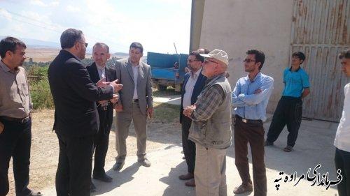 بازدید نماینده مجلس شرق گلستان و فرماندار مراوه تپه از مرکز خرید گندم بخش گلیداغ